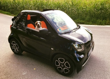 smart fortwo electric mit Kennzeichenhalter Edelstahl schwarz-glanz Frontbiegung
